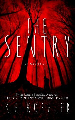 sentry_website